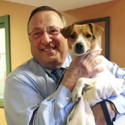 "The Greater Androscoggin Humane Society posted a picture on Facebook saying Gov. Paul LePage adopted a new ""first dog"" and named him Veto. This comes after the death of his previous Jack Russell terrier, Baxter."