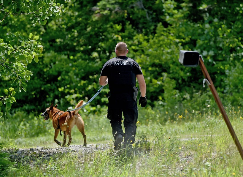 A Maine State Police tracking dog searches on Tuesday on Loom Road in Kingsbury Plantation for inmate Jonathan Edman, who authorities said ran away from a work detail before being apprehended a few hours later.