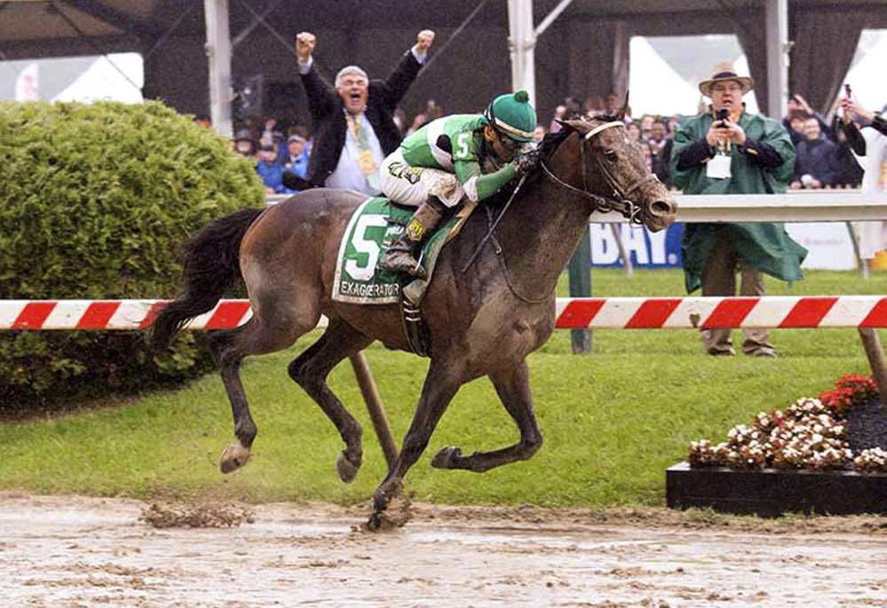 Michael Kerr celebrates while his brother George, right, records the moment as their 3-year-old thoroughbred, Exaggerator, crosses the finish line to win the Preakness at Pimlico Race Course in Baltimore last month. Two weeks earlier, Exaggerator placed second at the Kentucky Derby.