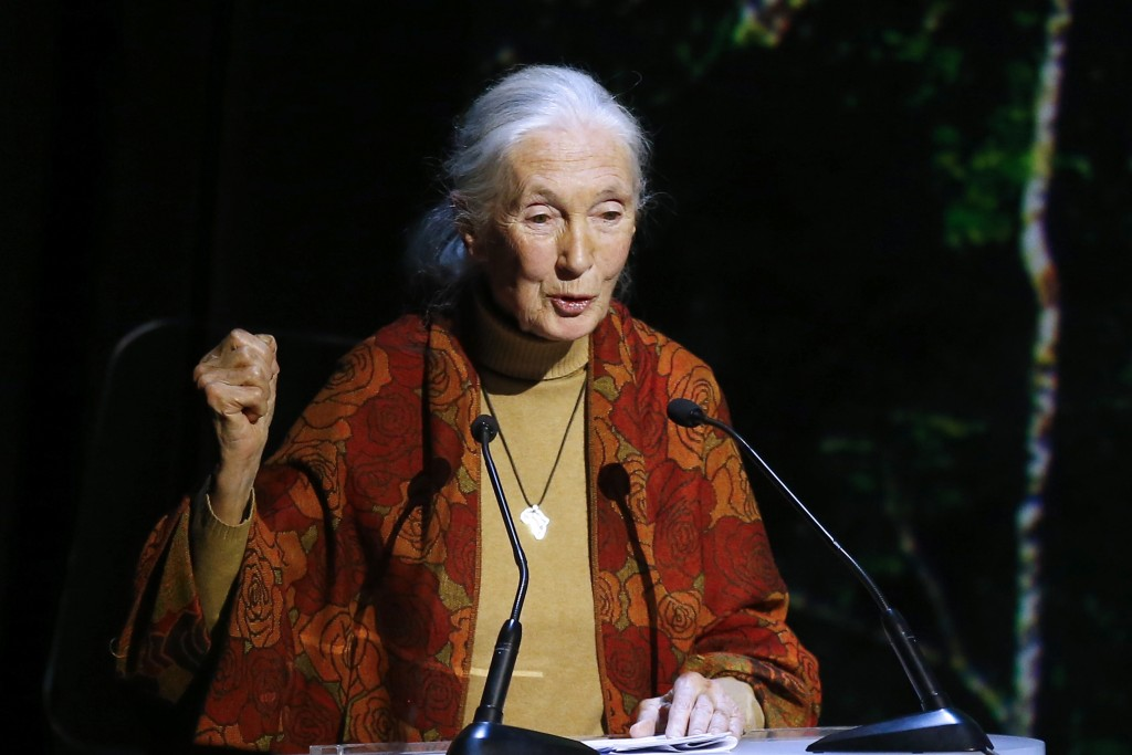 Primatologist and conservationist Jane Goodall in a 2015 photo. The Associated Press