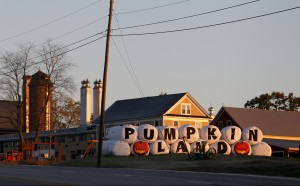 Harvest Hill Farms on Route 126 in Mechanic Falls, shown in 2014, has been sold at auction to buyers from Long Island, New York.