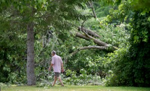 A man walks through a damaged section of Fort Halifax Park on Friday in Winslow. Heavy thunderstorms rolled through the area Thursday afternoon, leaving several trees down and 4,100 people without power.