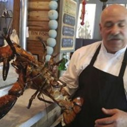 Chef Joe Melluso holds Larry the lobster at the Tin Fish restaurant in Sunrise, Fla.