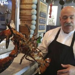 "Joseph Melluso, owner of a Florida restaurant, says the effort to save Larry the lobster ""had a lot of ... good intention behind it."""
