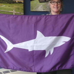 Leslie Reynolds, chief ranger at the Cape Cod National Seashore, displays a shark-alert flag in May at the National Park Service's Cape Cod headquarters in Wellfleet, Mass. The flags warn beachgoers to avoid the water where sharks have been sighted.