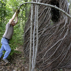 "Sculptor Patrick Dougherty bends a sapling while constructing an installation from branches and sticks at Tower Hill Botanic Garden, in Boylston, Mass. ""The Wild Rumpus"" opens to the public on Thursday and will last a couple of years, depending on weather. A good sculpture ""sparks all kinds of feelings about things in your own life,"" Dougherty says."