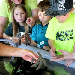 Kids at Maine Farm Days in 2014 have a close encounter with lobsters, starfish and sea urchins at a live exhibit of sea life by Maine Education Experience Unlimited at Misty Meadows Farm in Clinton. From left are Carly Spencer, Brady Bryant and Colt Robinson. This year's event is Wednesday and Thursday, also at Misty Meadows Farm.