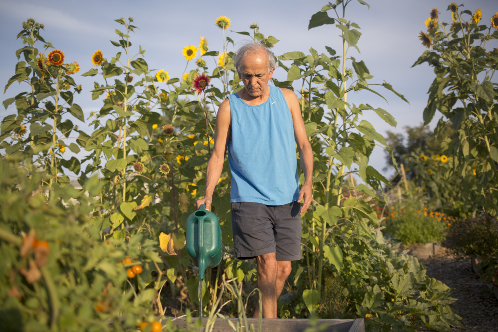 Ralph Carmona waters his plot at the North Street Community Garden. There is a long wait list for plots in Portland's community gardens, and now new gardens are being proposed in the Rosemont and Oakdale neighborhoods. Brianna Soukup/Staff Photographer