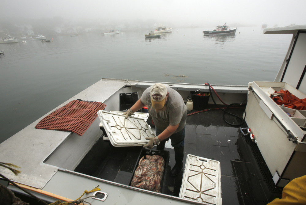 Joe Woods covers a crate of bait Thursday aboard the Schyler Annette at Greenhead Lobster in Stonington Harbor. Many of the area's lobstermen favor closing the state's last open zone, fearing outsiders are rushing to the area to cash in on the lucrative fishery.