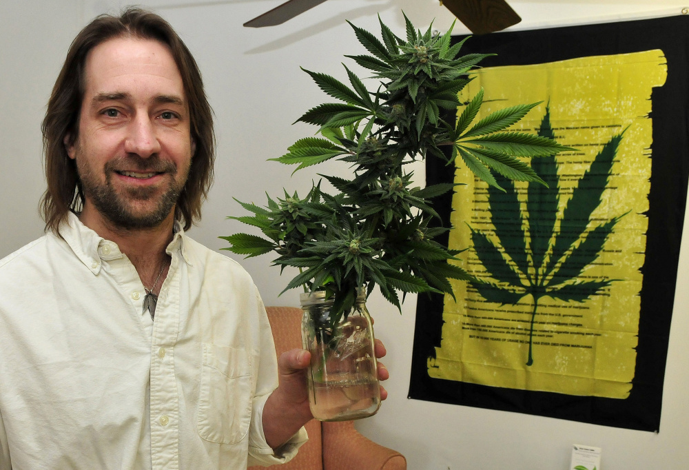 Dawson Julia of East Coast CBDs, a medical marijuana business in Unity, sought to be certified organic. David Leaming/Morning Sentinel