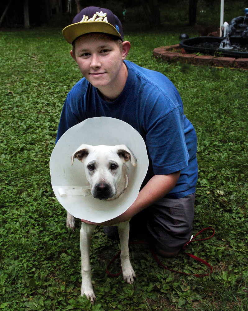 Shane Pottle holds his dog, Tucker, who is wearing a collar to prevent him from injuring his mending broken leg Wednesday after a car crash three weeks ago. Tucker ran off from the crash site on U.S. Route 201 in Madison. Pottle and his mother found him last week with help from Maine Lost Dog Recovery.
