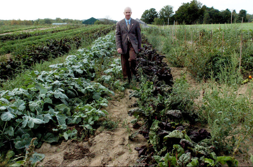 Waldo County Sheriff's Office Jail Administrator Ray Porter walks through one of the huge vegetable gardens at the Maine Coastal Regional Reentry Center farm in Swanville on Wednesday.