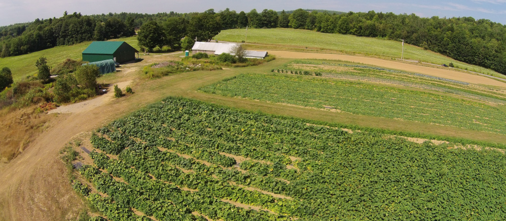 An aerial photo of vegetable gardens at the Maine Coastal Regional Reentry Center farm in Swanville.