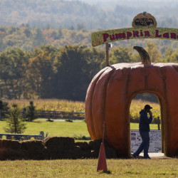 A man is silhouetted against the cutout of a pumpkin as he talks on his cell phone at Harvest Hill Farms in Mechanic Falls on Route 126 Oct. 12, 2014, the morning after the hayride accident that killed Cassidy Charette, 17, of Oakland and injured more than 20 others.