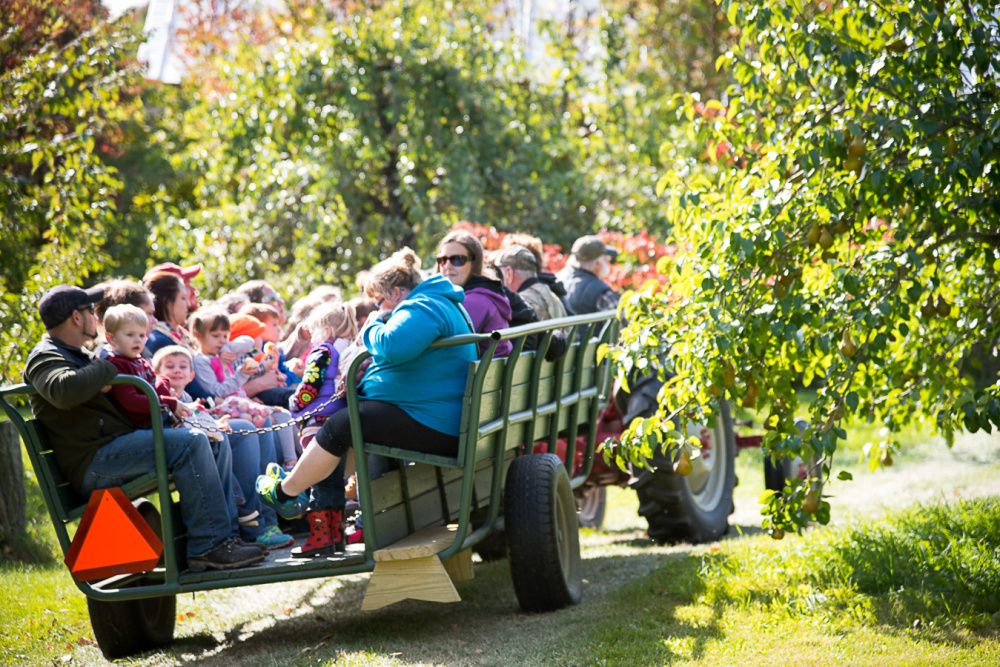 Children and adults from Pittsfield-Manson Pre-K in Pittsfield complete their hayride around The Apple Farm in Fairfield.