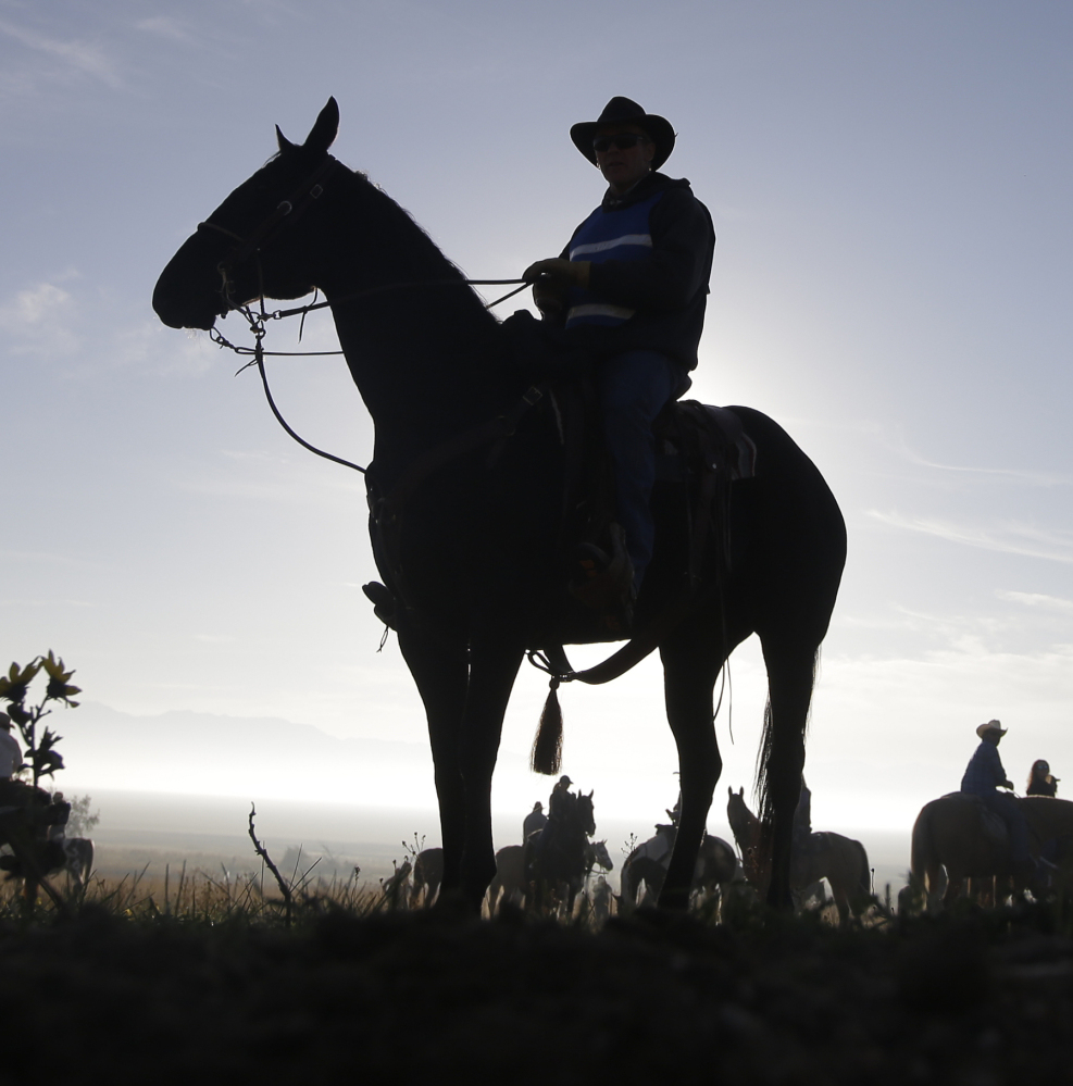 Some mamas still let their babies grow up to be cowboys, and they're needed in Utah.