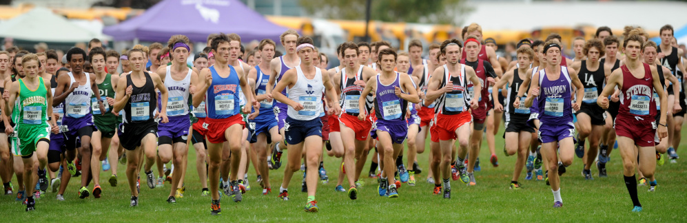 The boys race takes off from the starting line at the Festival of Champions Saturday in Belfast.
