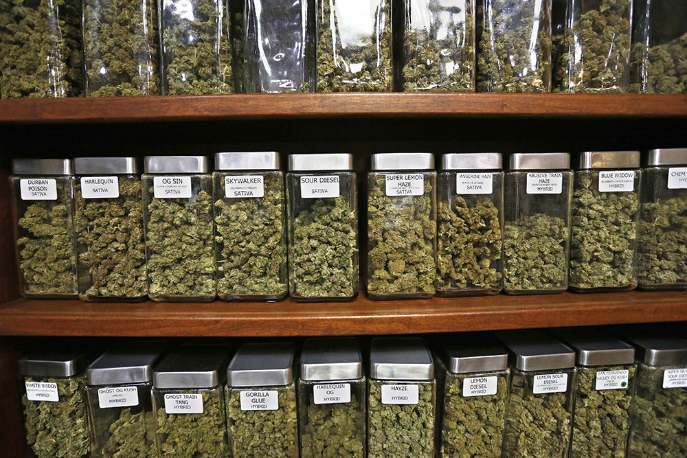 Containers display varieties of marijuana for sale at The Station, a retail and medical cannabis dispensary in Boulder, Colorado. A new report finds that marijuana is already pulling in tax revenue at three times the rate of Colorado's alcohol industry. <em>Associated Press/Brennan Linsley</em>
