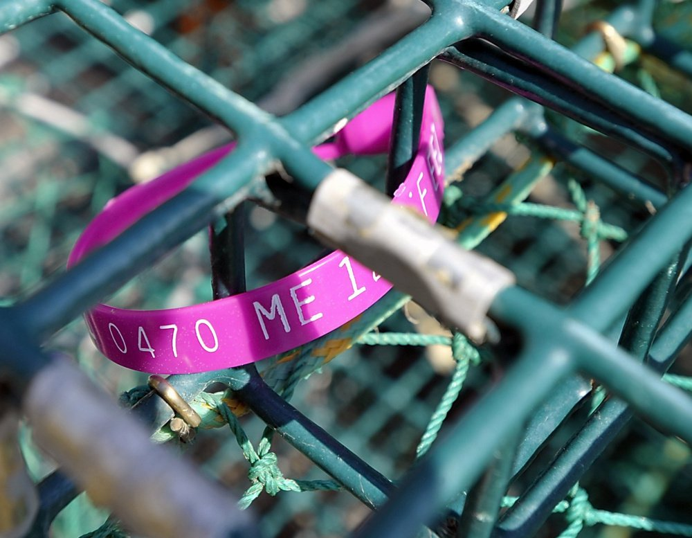 Limits on how many traps  lobstermen can drop outside their zone are hard to enforce with only one tag on each trap, marine patrol officials say.
