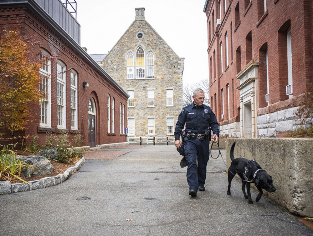 Bella, an explosives detection dog at Worcester Polytechnic Institute, is walked by her handler, a police officer, in Worcester, Mass.