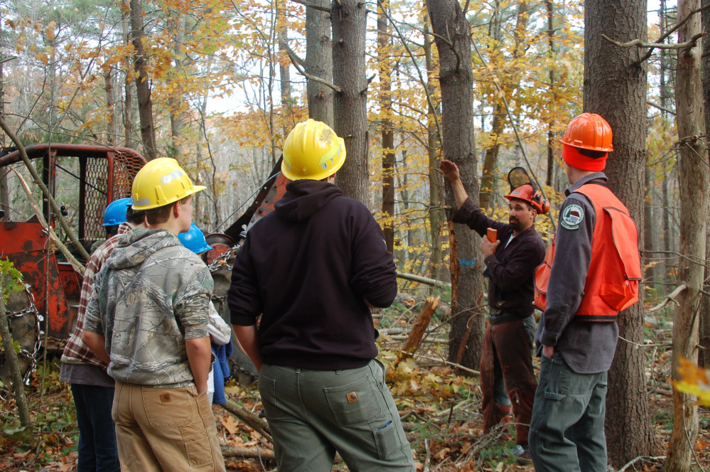 Leeds-based logger Nat Bell talks with students about the safety measures that should be taken when working in the woods.
