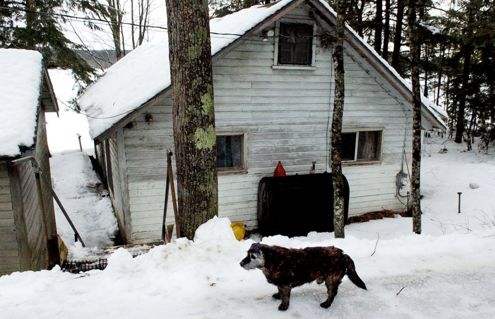 Pee-wee the dog, owned by Richard and Leonette Sukeforth, remains vigilant Wednesday outside their former home on Lovejoy Pond in Albion. The Sukeforths, who are staying in Holden with their daughter, were evicted from their home recently after the town foreclosed on it for nonpayment of taxes and then sold it by auction. Pee-wee is living temporarily with the Sukeforths' son and daughter-in-law across the road from their former home because dogs are not allowed in the trailer park in Holden where they are staying.