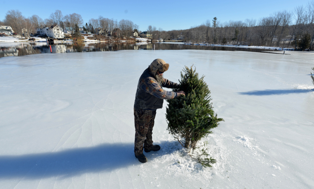 Todd Jackson adjusts old Christmas trees along the north end of Messalonskee Lake in Oakland on Saturday. The trees were installed to warn people of the thin ice and open water.