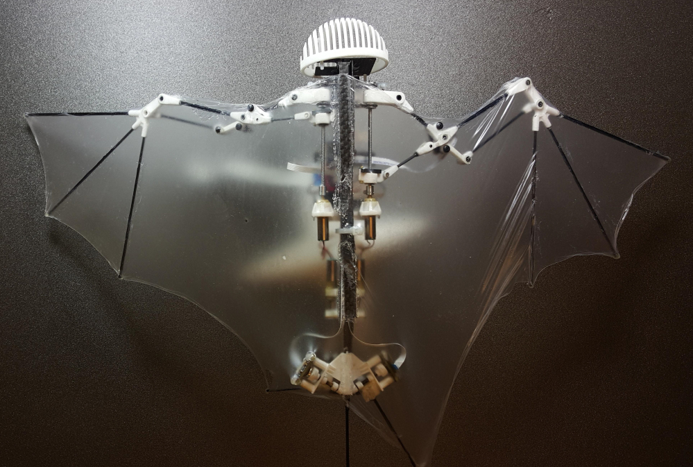 With wings that flap, Bat Bot, a 3-ounce flying robot, may be better at getting into treacherous places than standard drones. That's because it mimics the flexible way bats fly, authors of a new study note.