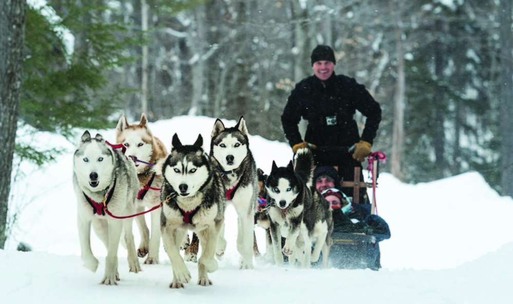 Heywood Kennels in Augusta will give dog sled rides Wednesday, Feb. 22, at the Viles Arboretum in Augusta.