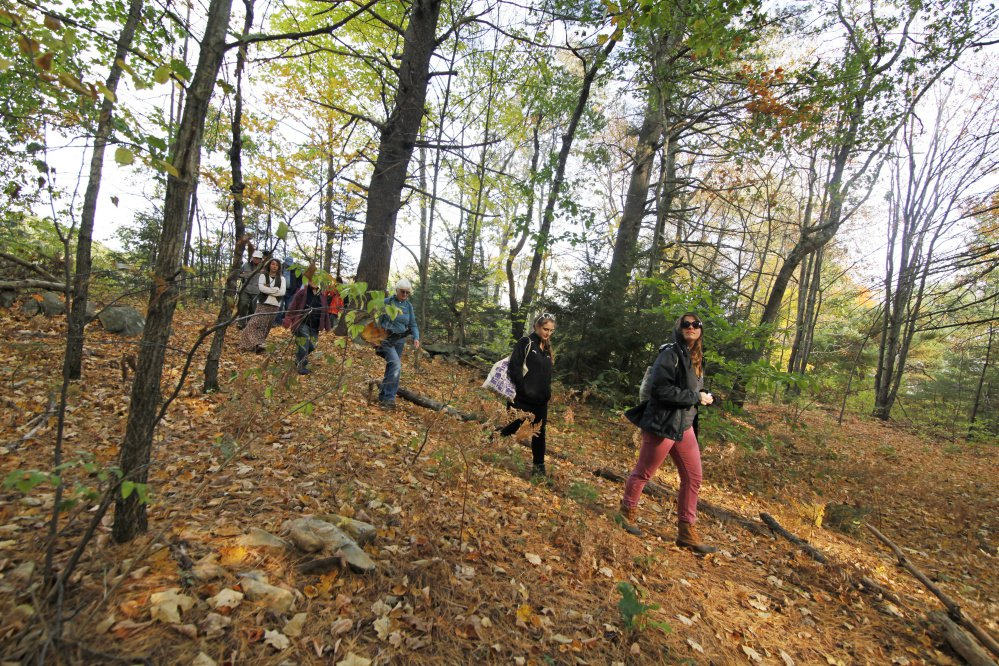 People forage for mushrooms at Negutaquet Conservation Area in North Berwick. Sen. Thomas Saviello, R-Wilton, has put forth a bill that would prohibit foraging on private property without the owner's consent.