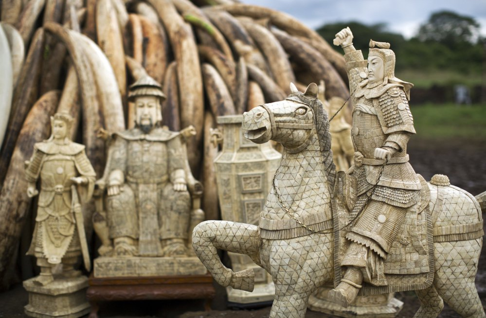 FILE - In this Thursday, April 28, 2016 file photo, confiscated ivory statues stand in front of one of around a dozen pyres of ivory, in Nairobi National Park, Kenya. A leading elephant conservation group said Wednesday, March 29, 2017 that the price of ivory in China has dropped as the country moves toward a ban on the legal trade of ivory this year. (AP Photo/Ben Curtis, File)
