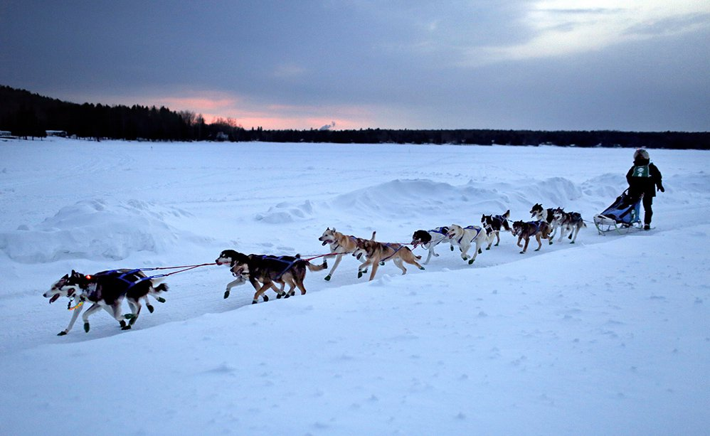 Martin Massicotte of St-Tite, Quebec, guides his sled dog team over Portage Lake at dusk Saturday, March 1, 2014, during the Can Am Crown 250-mile International Sled Dog Race. Massicotte won the 2014 race and took the title again in 2017.