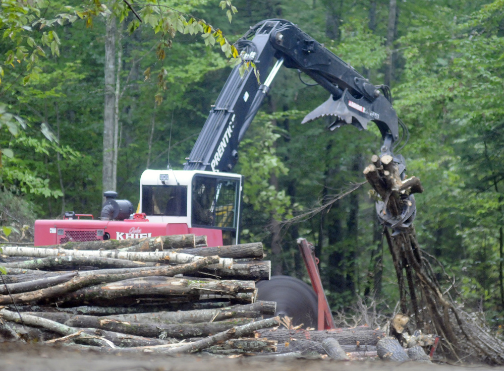 A loader sorts wood harvested at the Jamies Pond Wildlife Management Area in Manchester in this file photo from September. Work will continue this summer on the parcel of land managed by the Department of Inland Fisheries & Wildlife, which has said it wants to improve habitat for animals in the forest.