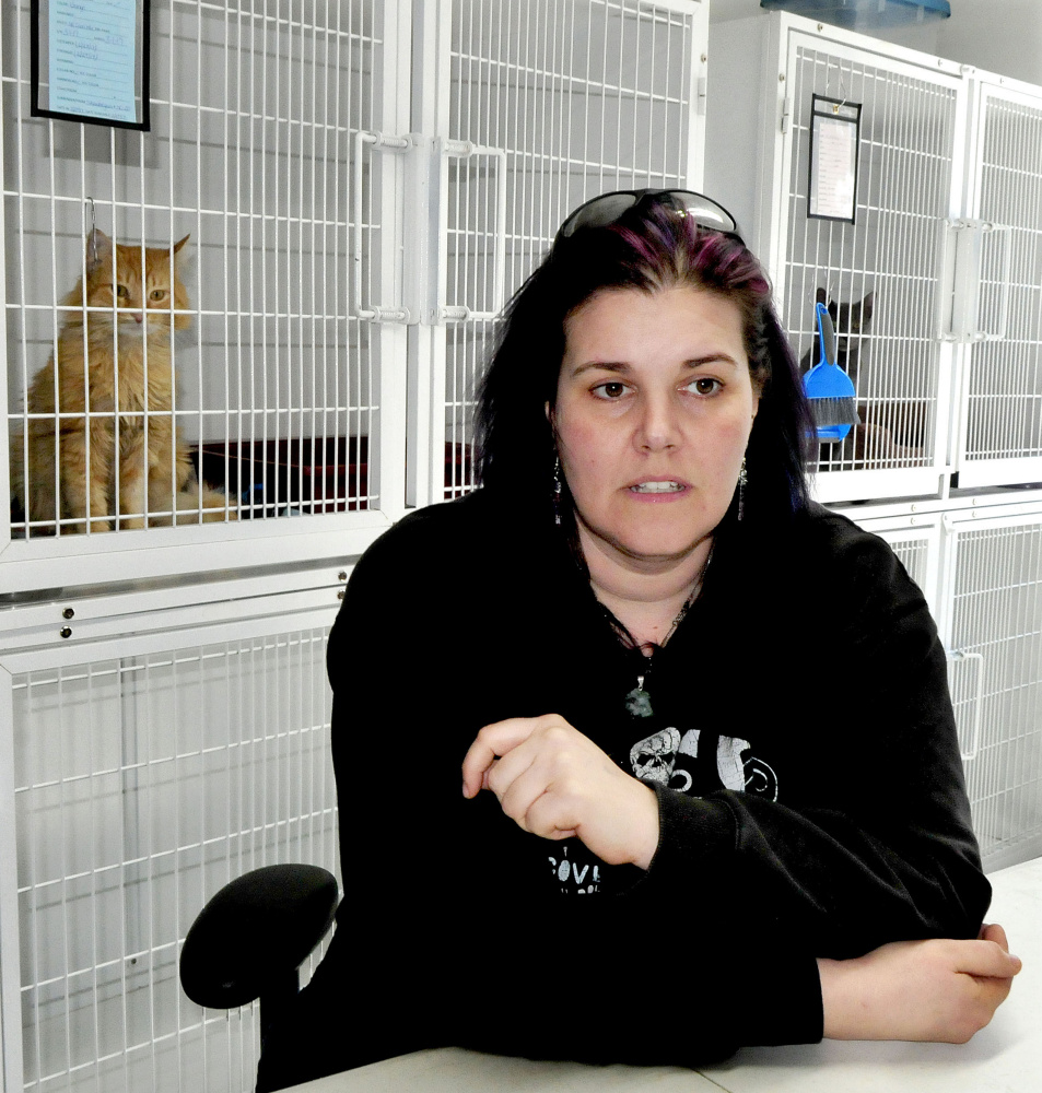 As two cats watch from cages, Bonnie Brooks of the Somerset Humane Society in Skowhegan discusses Thursday the practice of animal