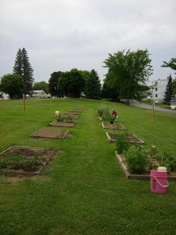 Use of the community garden on Dallaire Street in Winslow, seen during springtime, has dwindled since the garden was created in 2010, but the town's new parks and recreation director is aiming to boost participation this year.