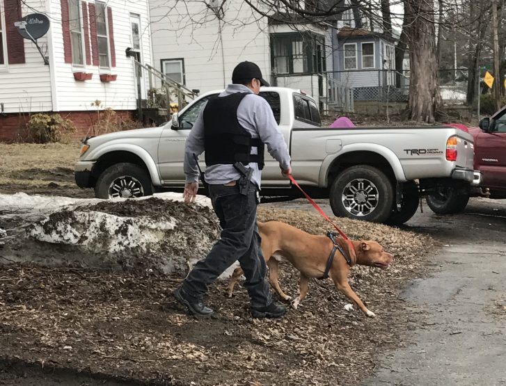 A police officer removes a dog from a residence Friday on Front Street in Waterville after the dog reportedly attacked its owner, who was injured and sent to the hospital.