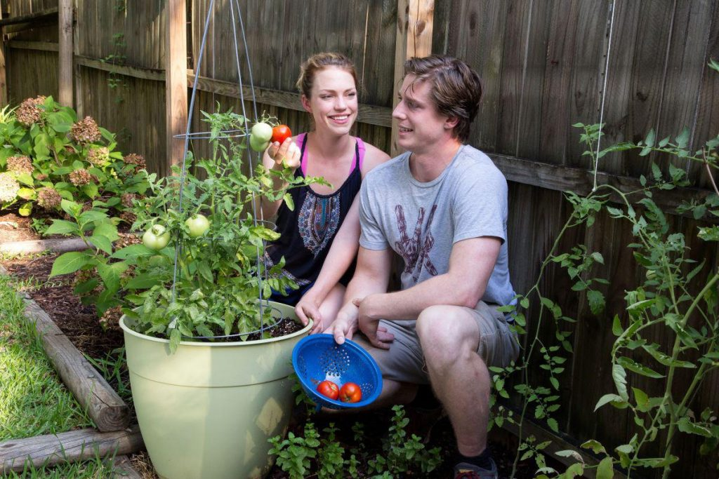 Better nutrition is among the benefits gardening confers.