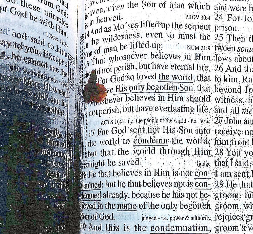 This photo released Thursday in a report by the Massachusetts Department of Correction shows a Bible open to John 3:16, with the verse marked in blood. The Bible was found in the cell of former New England Patriots player Aaron Hernandez after he was found hanged in his cell on April 19. Hernandez was serving a life sentence in the 2013 murder of Odin Lloyd.