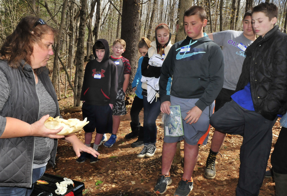 Missy Brandt asks Skowhegan Middle School students questions about the different characteristics of wildlife skulls at one of the stations in the woods behind the Marti Stevens Learning Center in Skowhegan during a forest field day on Wednesday.