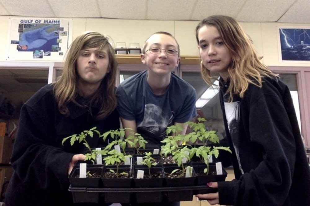 Wiscasset Middle High School Science students, from left, Isaiah DeCosta, Xavier Poissonnier and Chloe Desjardins exhibit some of the heirloom tomato seedlings that will be available at the sale.