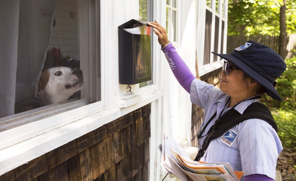"""A window screen is all that separates postal carrier Zoraida Cook from a growling dog. Cook says she understands that dogs are usually just being protectors and """"they are not sure what we are doing."""""""