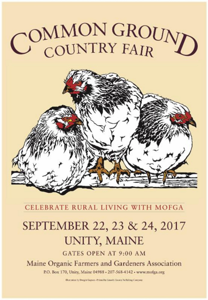 Dwight Gagnon, of Benton Falls, winning entry for the 2017 Common Ground Country Fair poster contest features three roosting Columbian Wyandotte chickens.