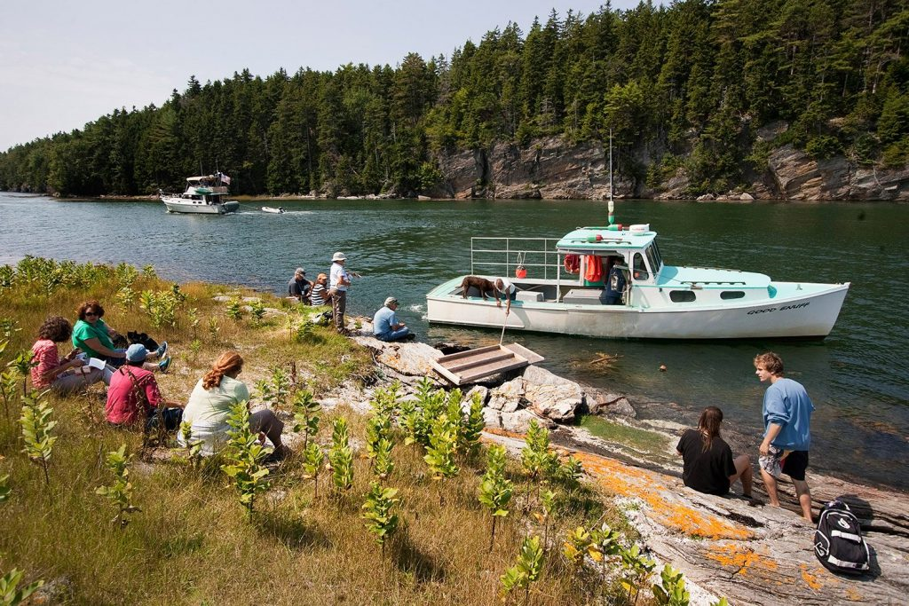 People enjoy lunch on Malaga Island as the boat returns to bring them back to mainland Phippsburg in 2014.