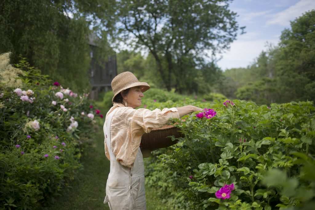 Cultivating the art of practical magic on a Rockport farm ...