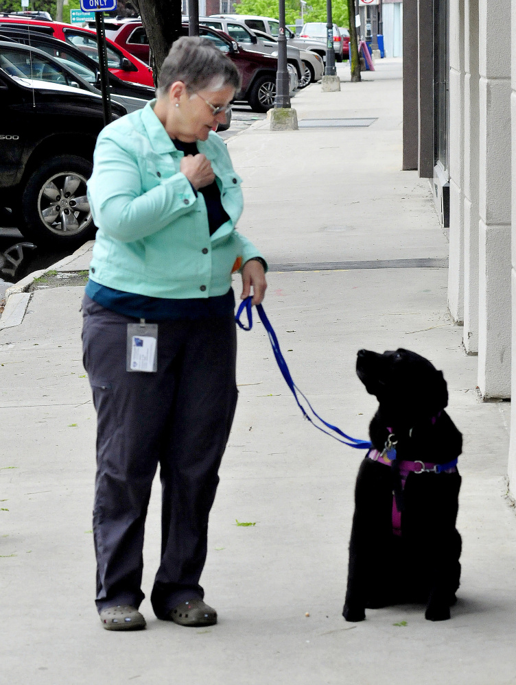 Therapy dogs provide treatment in Waterville, but demand calls for ...
