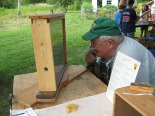Peter Lammert, of Thomaston, views an observation hive of live bees at a previous Open Farm Day event.