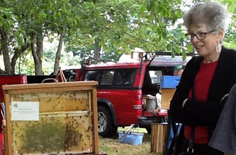 A visitor views the hive of live bees at a previous Open Farm Day event.