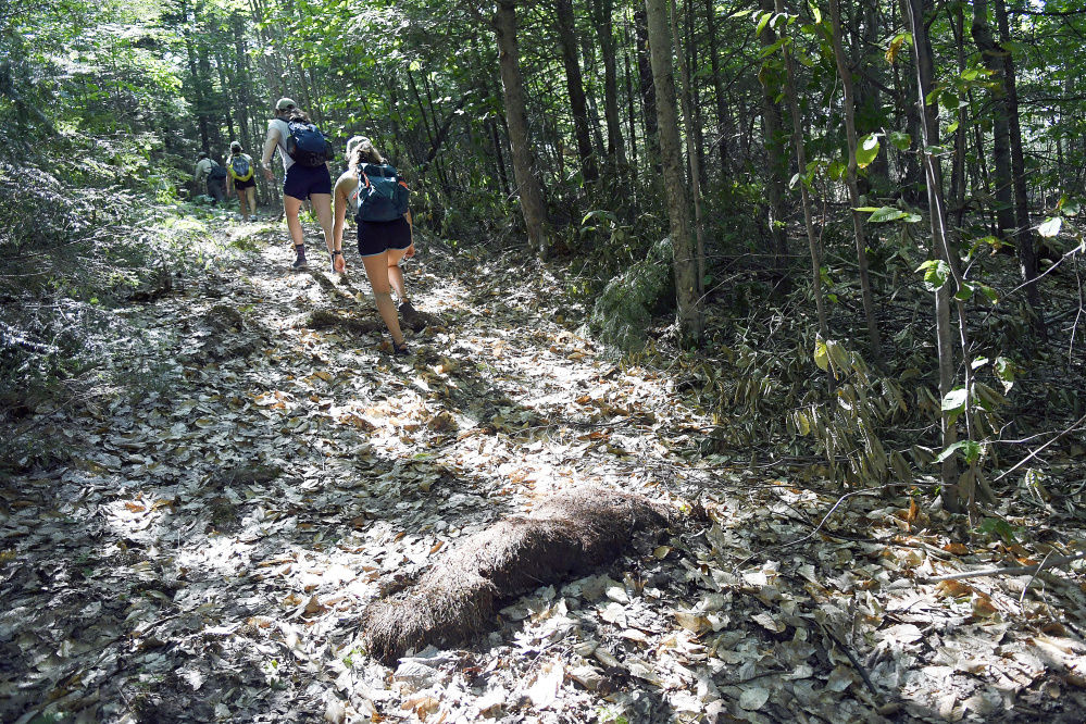 Kennebec Land Trust workers hike 1.5 miles of new trail on Mount Pisgah in Winthrop. The group will buy two pieces of land, bringing to 1,080 the number of protected acres.