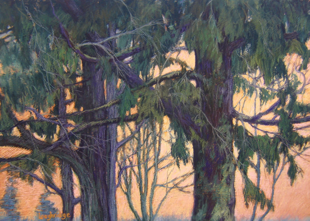 """Canopy,"" a soft pastel on panel."