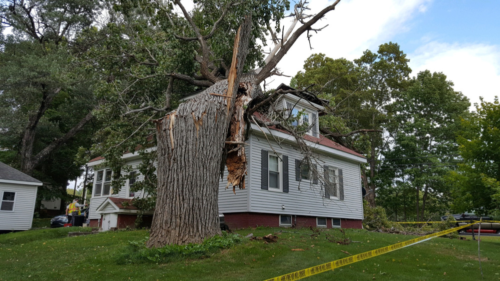 This tree crashed into a Vassalboro home Friday afternoon, injuring one and leaving the home uninhabitable.